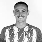 Nicolás Gudiño Castilla