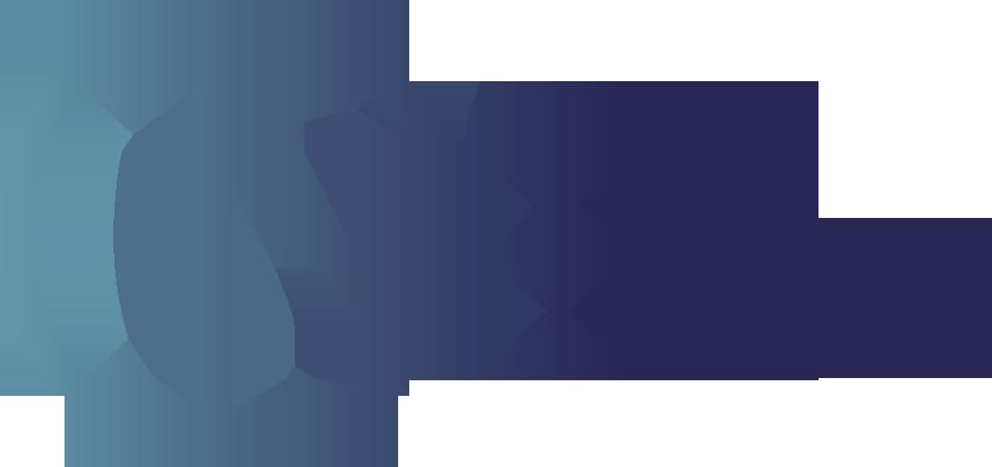 Nibank_logo